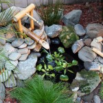 Mini_Fish_Pond_Design_Resembling_Small_Waterfall