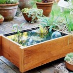 Mini_Fish_Pools_Blend_with_Home_Terrace